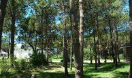 Pinamar Chalet En Alquiler Con Piscina Zona Norte – 579